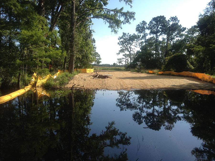 wetland-mitigation-2